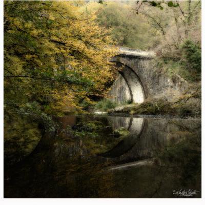 Le Pont de Saint-Mesmin