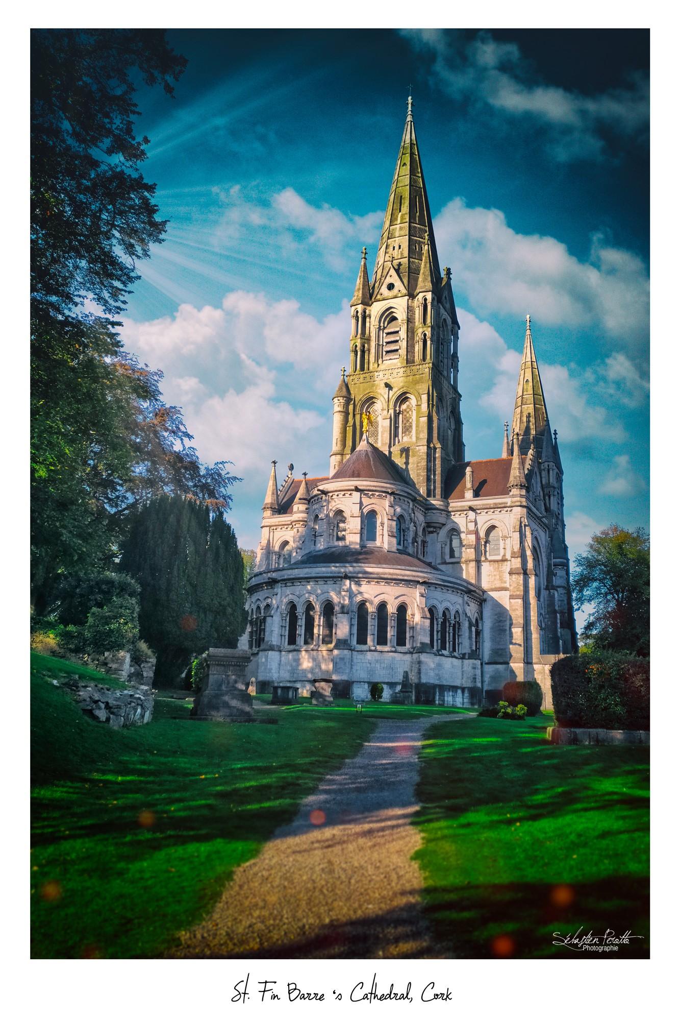 St. Fin Barre's Cathedral - Irish Republic